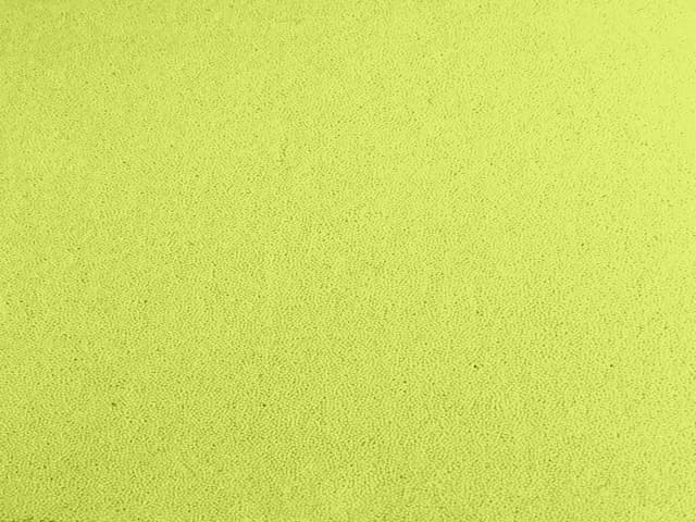 Cut Pile in Nylon Carpet Tiles - Clearance - Pale Lime - 50cm x 50cm